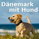Urlaub mit Hund Dnemark