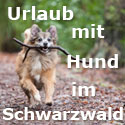 Urlaub mit Hund Schwarzwald